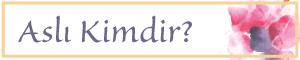 AND-Aslinin-Not-Defteri-Asli-Kimdir-Menu-Yonlendirme